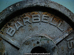 barbell plate2 The Shocking Truth About Rep Ranges