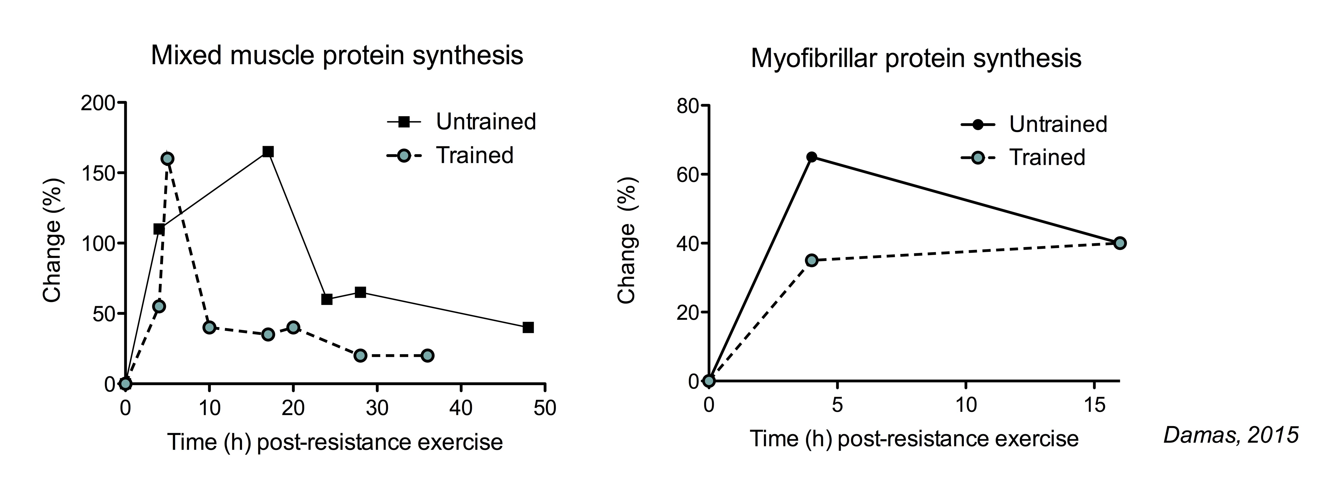 The Ultimate Guide To Muscle Protein Synthesis Verify That Resistances In Series Do Indeed Add Let Us Consider Contrast Myofibrillar Rates Not Increase As Much Trained Subjects But Duration Of