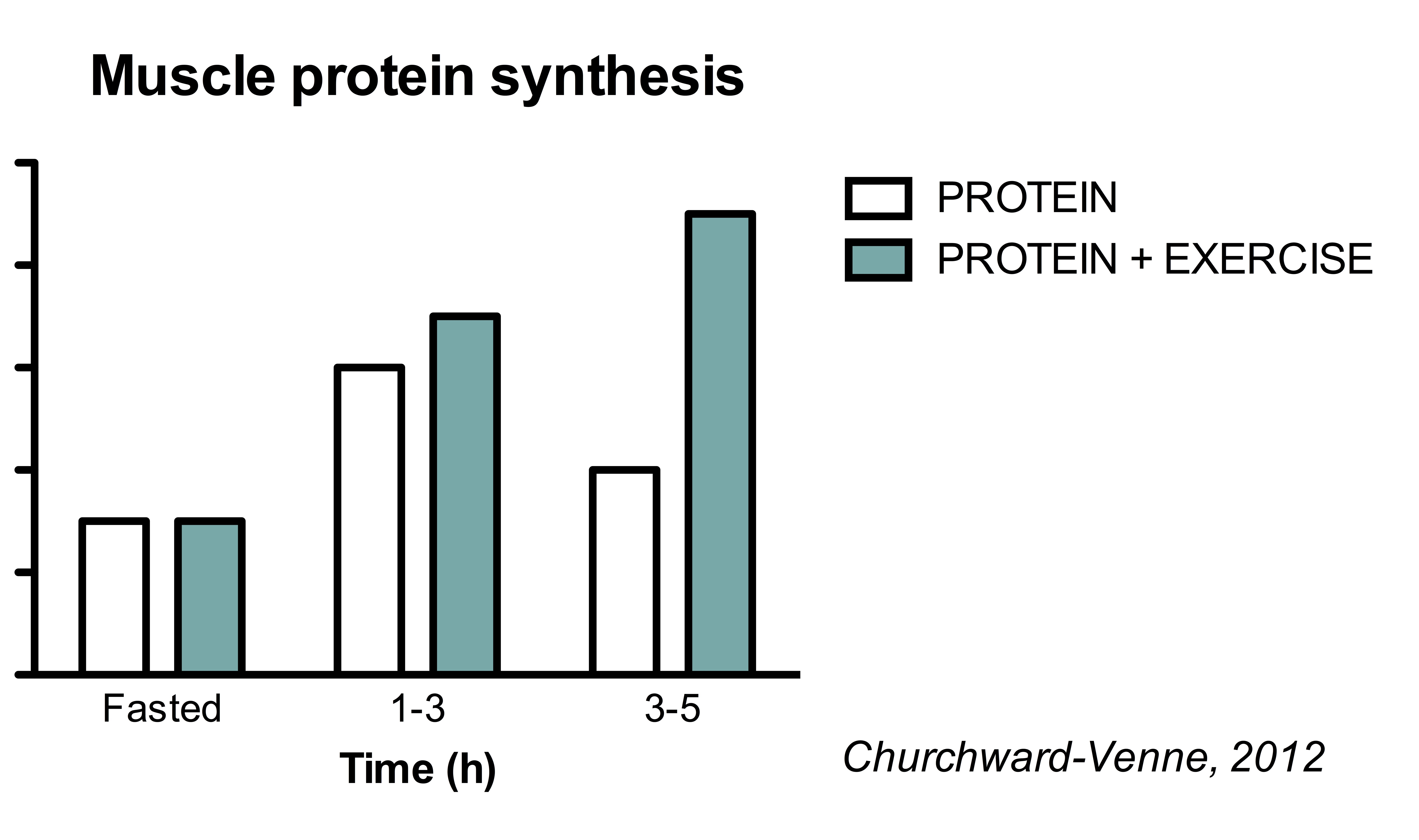 The Ultimate Guide To Muscle Protein Synthesis There Is An Incorrect Term In Diagram Explain Which This Exercise Vs Full Effect