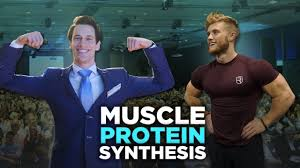 0d5e7ef1465 Muscle protein synthesis is the underlying process that is driving muscle  growth.
